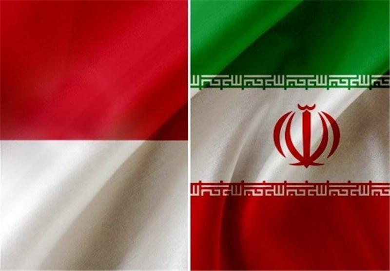 راه های توسعه صادرات به اندونزی از زبان رایزن ایران