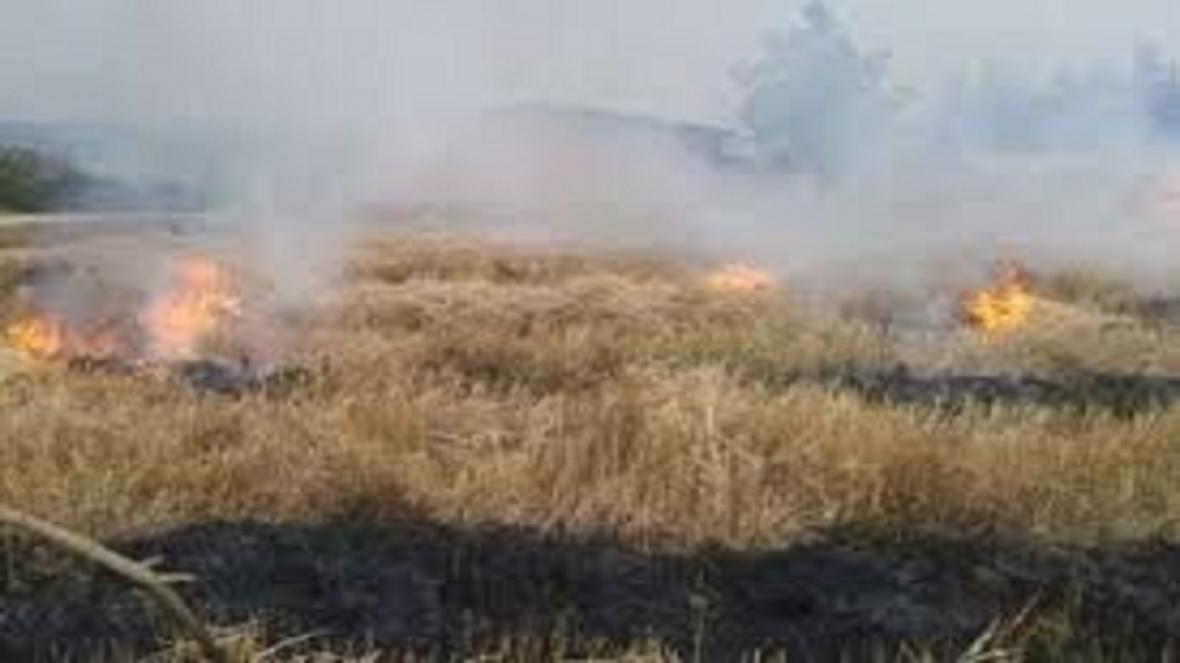 معرفی 13 نفر به جرم سوزاندن بقایای کشاورزی به دادگاه