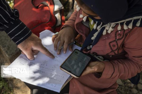 خبرنگاران پیغام های ارسال شده در شبکه شاد از 24 میلیارد گذشت