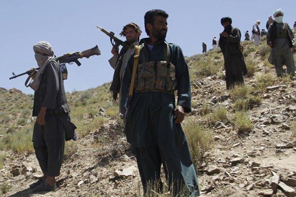 شهرستان تولک افغانستان به دست طالبان سقوط کرد